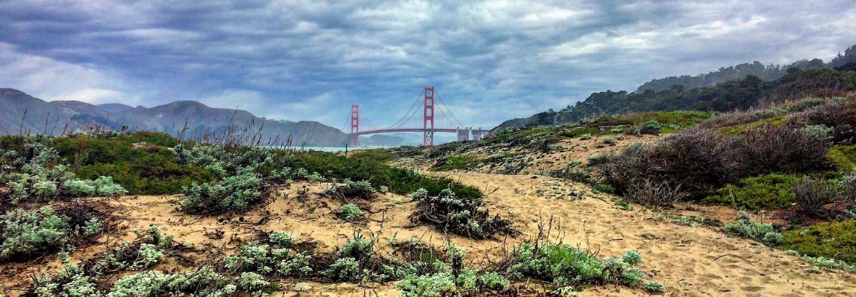 San Francisco Mama