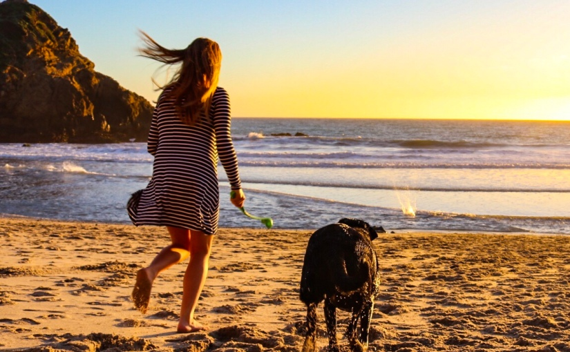 Pfieffer Beach & the never ending drive toPismo.